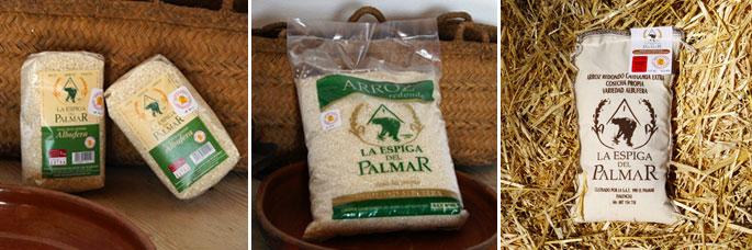 Variedad de arroz Albufera